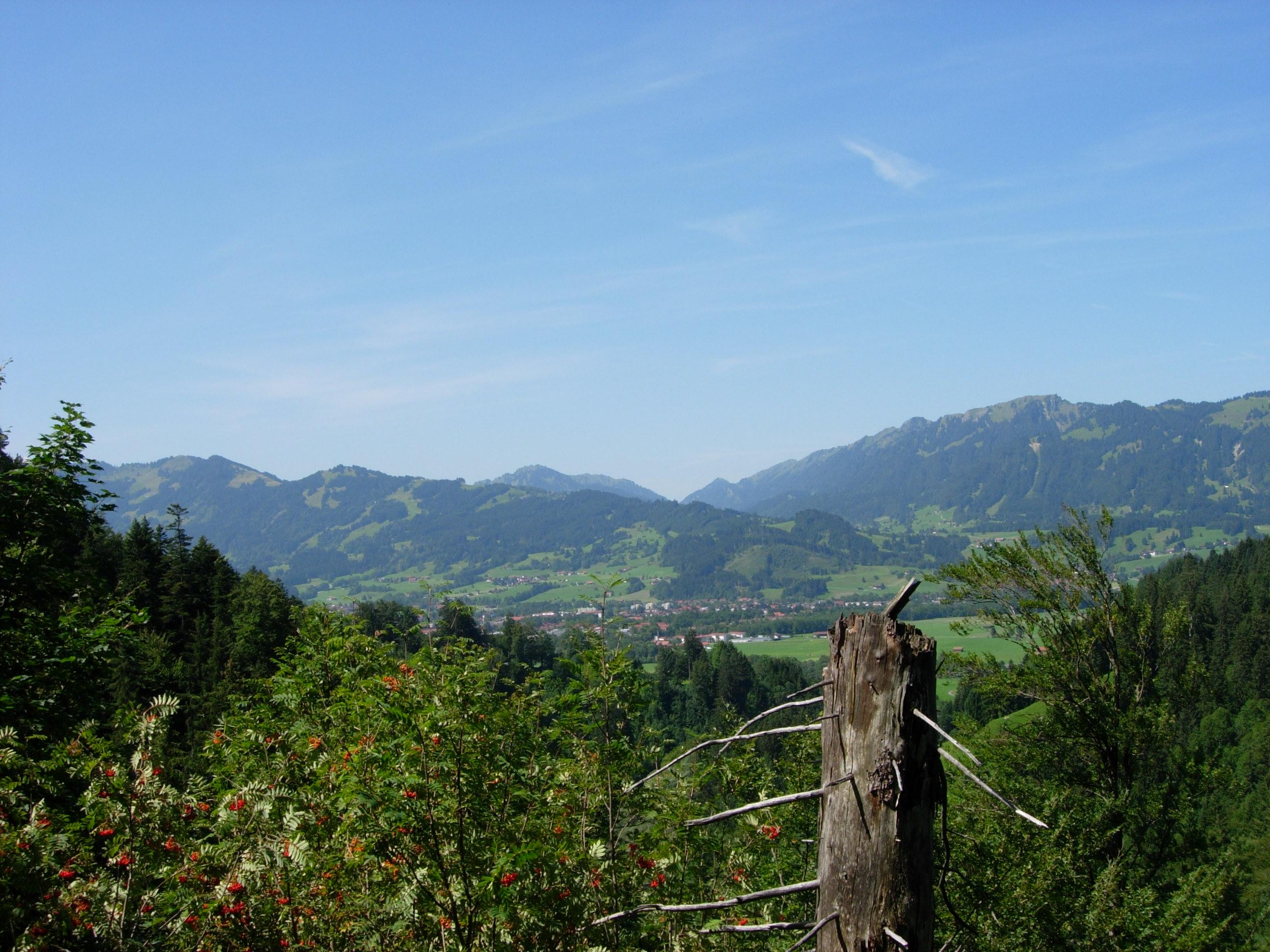 Blick vom Grünten auf die Allgäuer Alpen